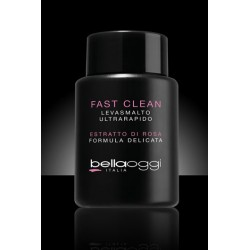 FAST CLEAN REMOVER